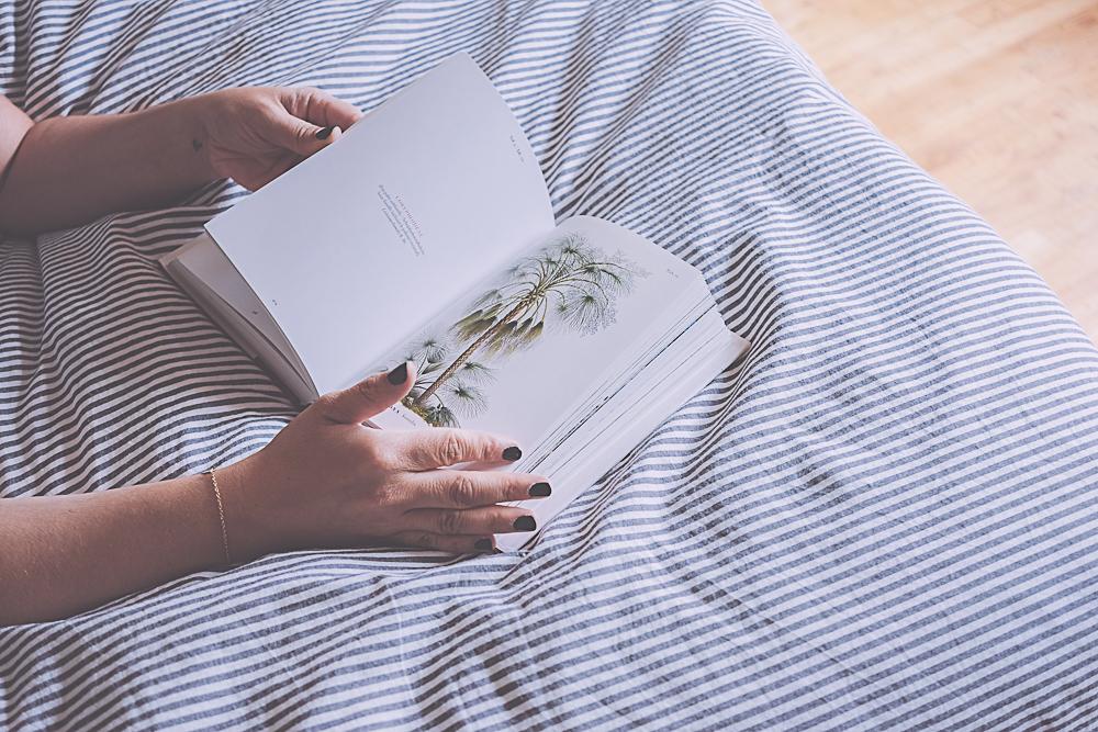 the book of palms - Taschen