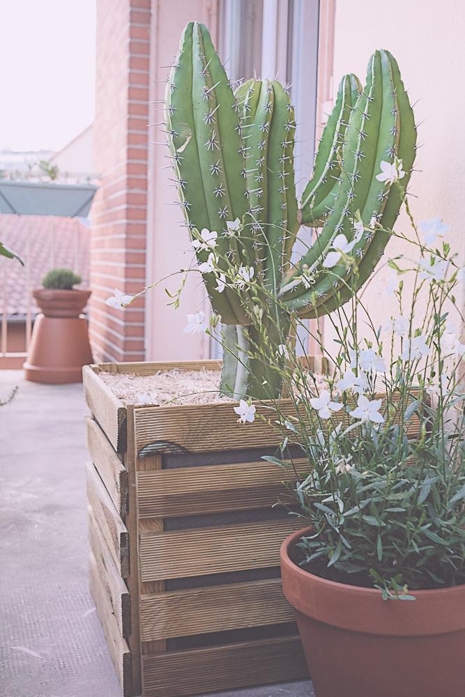 DIY jardinière en bois pour cactus