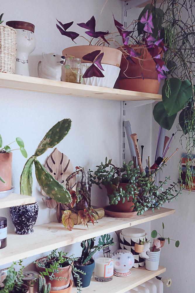 décoration morganours céramiques et plantes