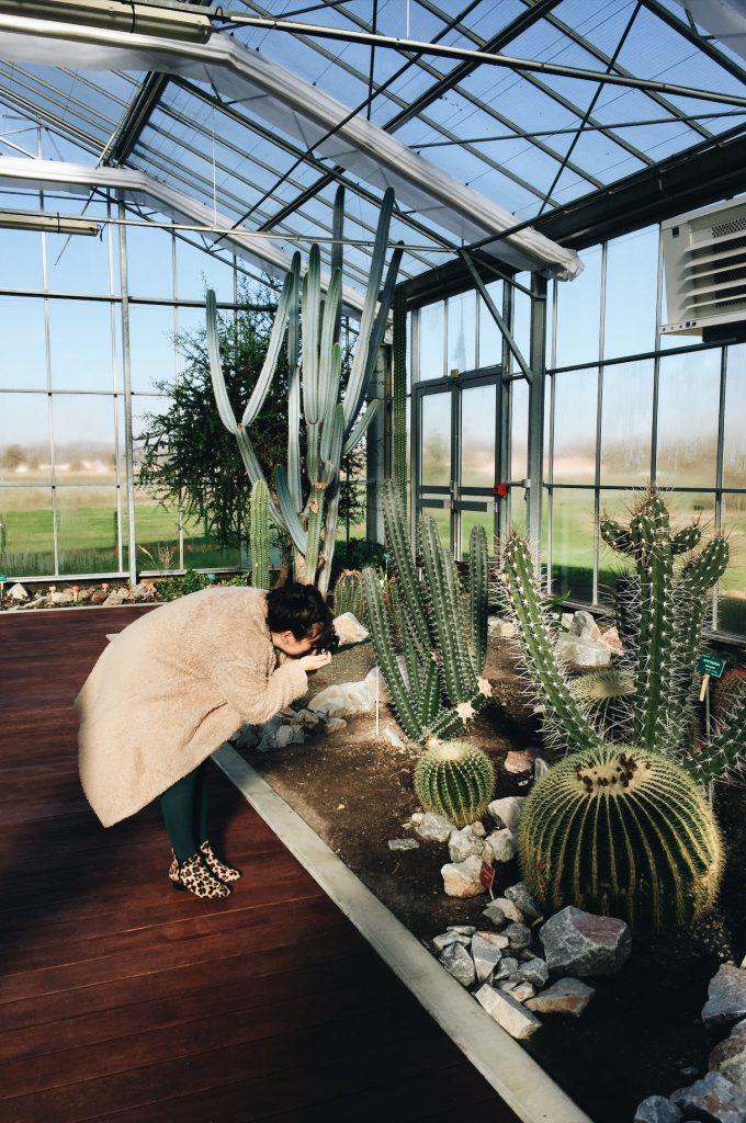 Conservatoire botanique Pierre Fabre