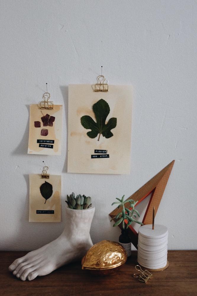 DIY affiche herbier