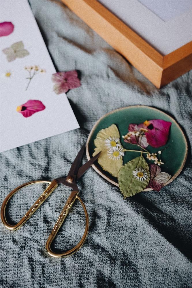 Atelier cadre de fleurs séchées - La maison bleue - Bordeaux
