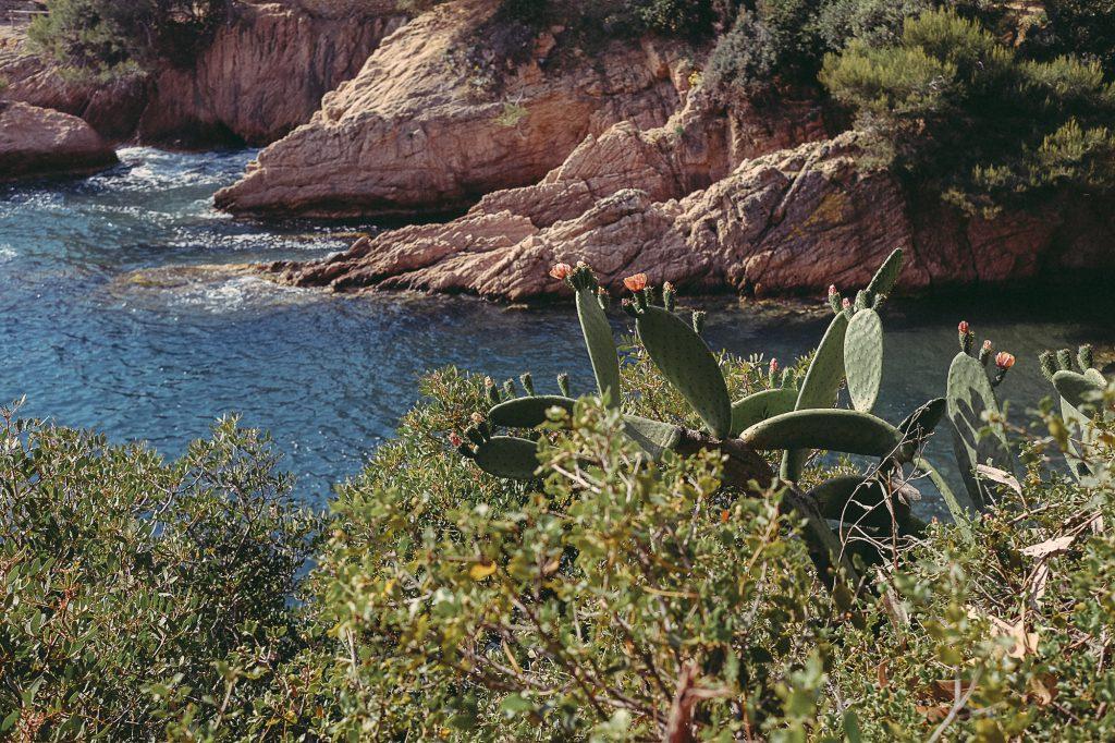 Sant Feliu des Guíxols - Espagne - Catalogne